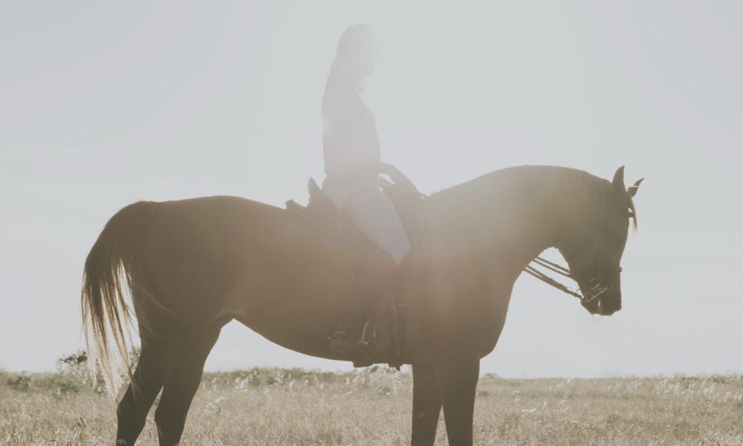 Сектор Путешествующей Лошади в фэн-шуй