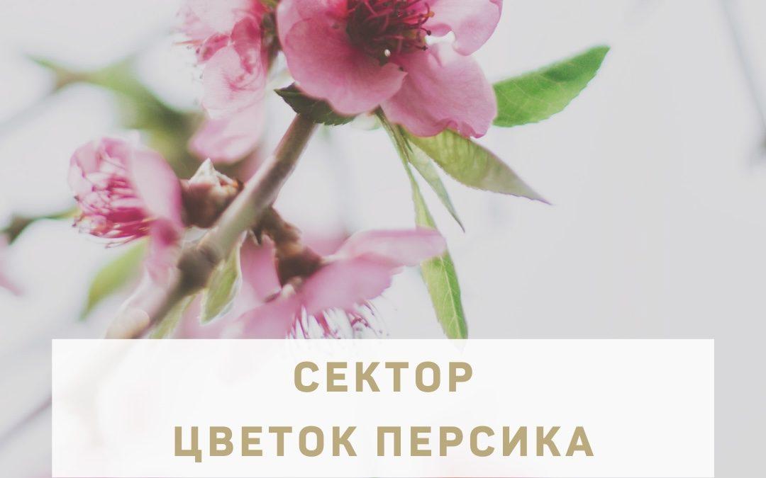 """Сектор """"Цветок Персика"""" в фэн-шуй"""