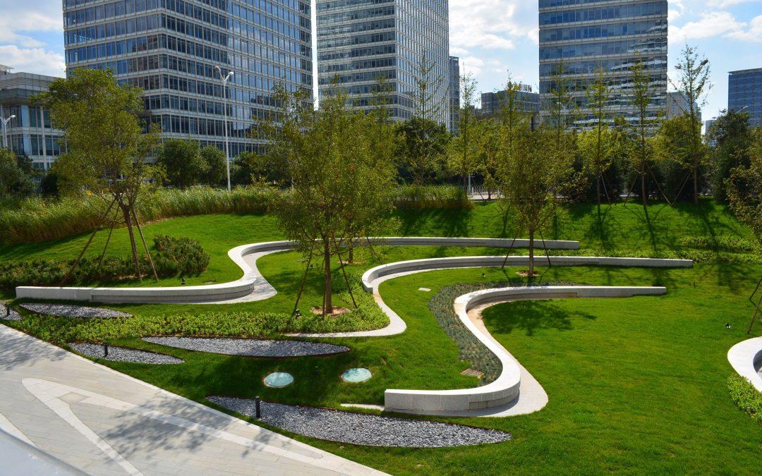 Почему важен ландшафт в фэн-шуй консультации?
